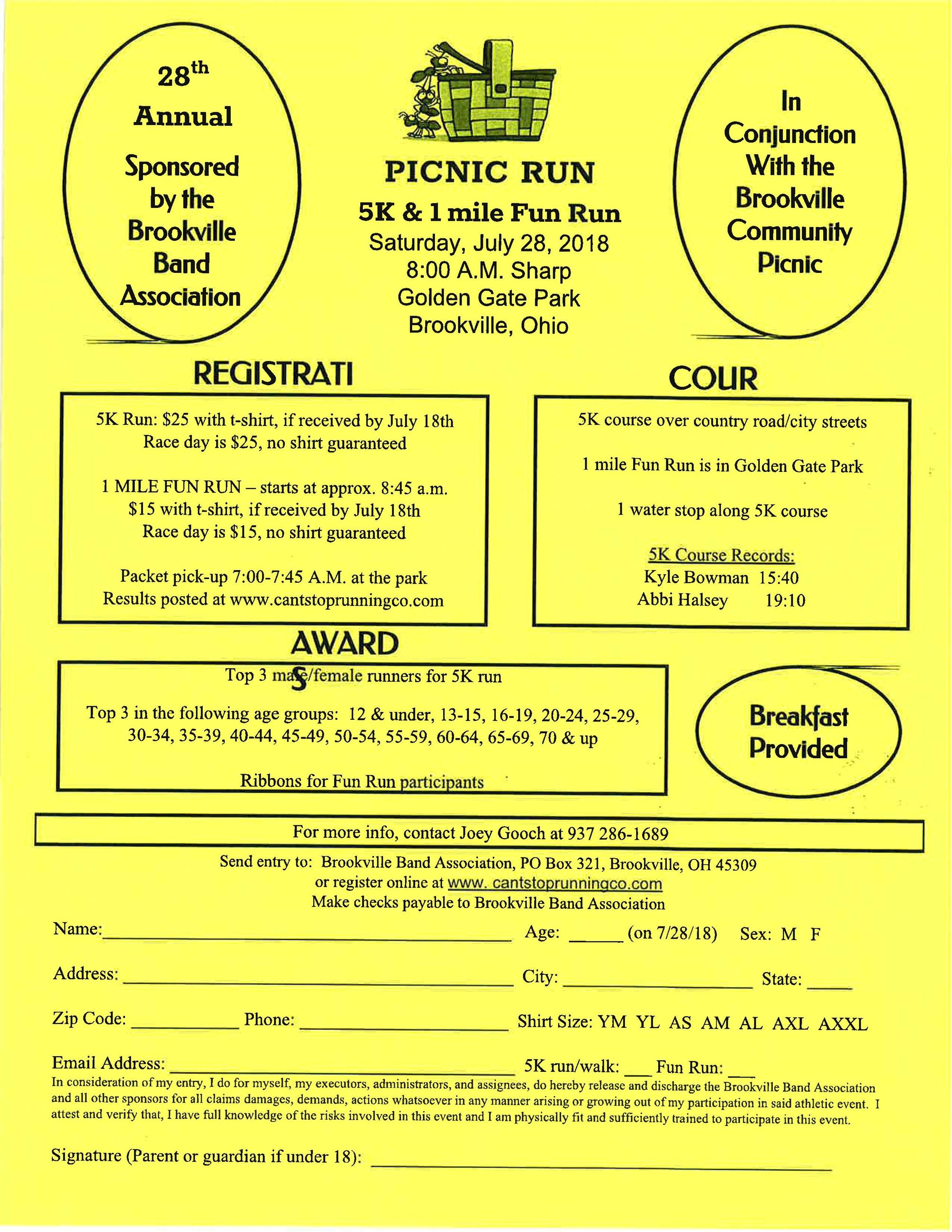 Picnic 5k run flyer