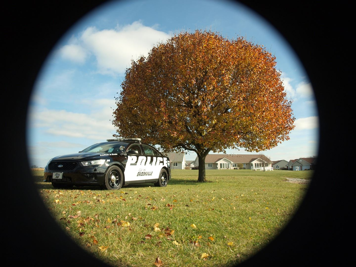 Police Patrol Car Next to a Tree with Autumn Colored Leaves